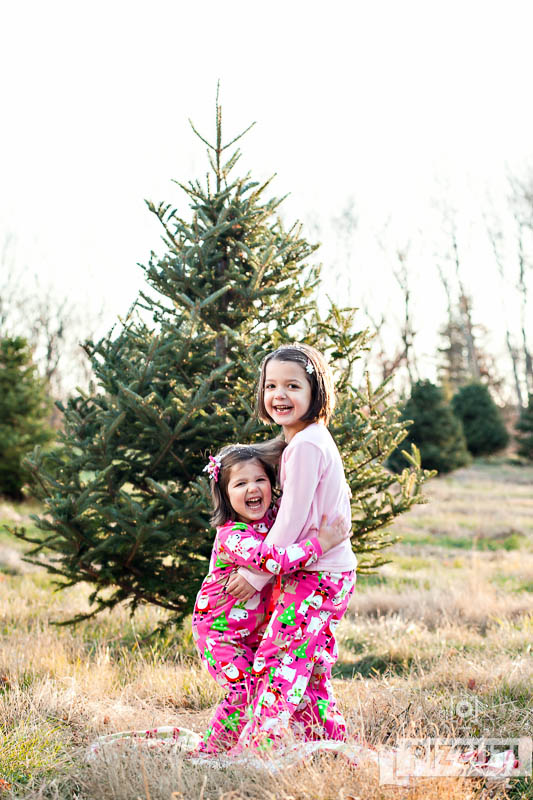 ... christmas-tree-farm-portraits-05 ... - Pizzuti Cuties Photography Christmas Tree Farm - Mini Sessions - 11