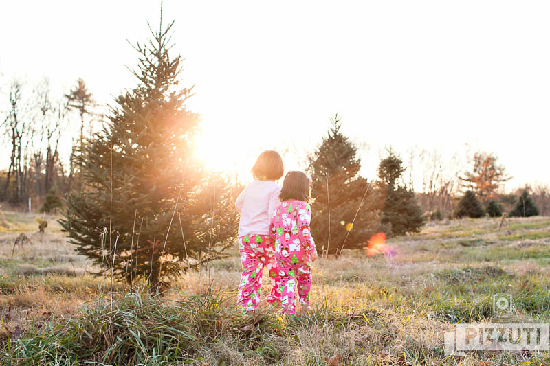 christmas-tree-farm-portraits-13