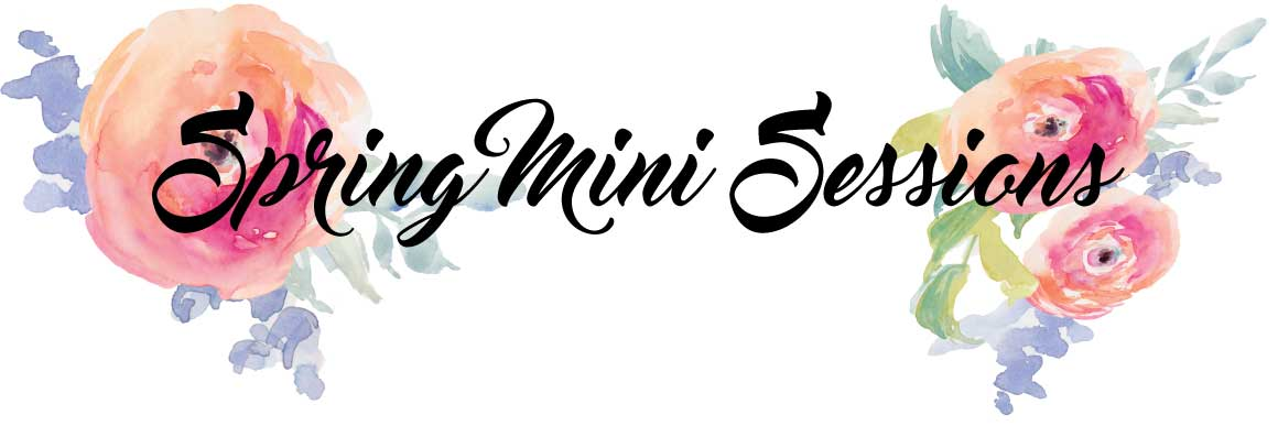 spring-mini-sessions-header